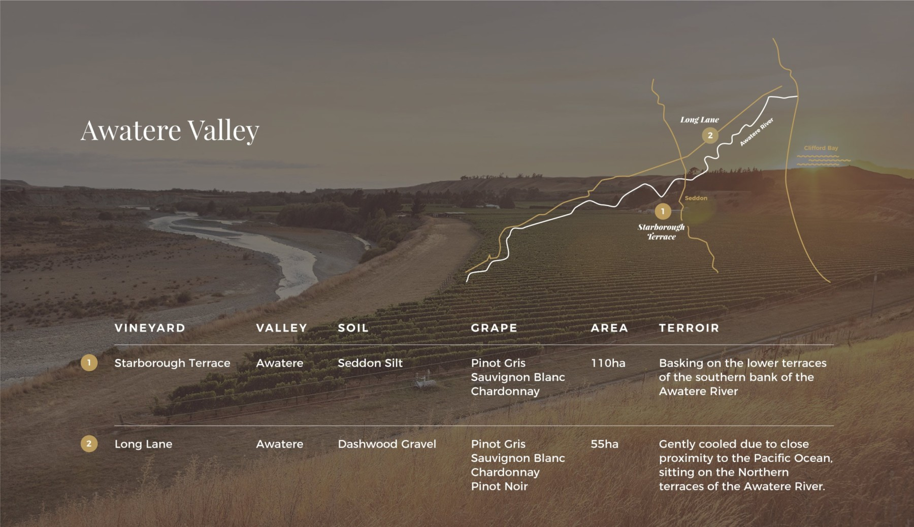 Map of Awatere Valley over laid on image of vines near river